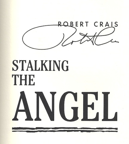 Image for Stalking the Angel