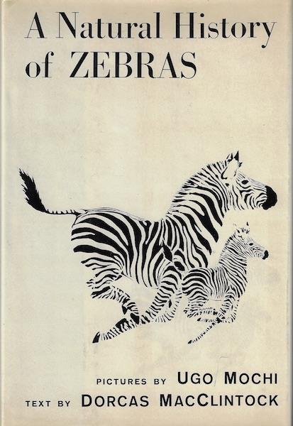 Image for A Natural History of Zebras