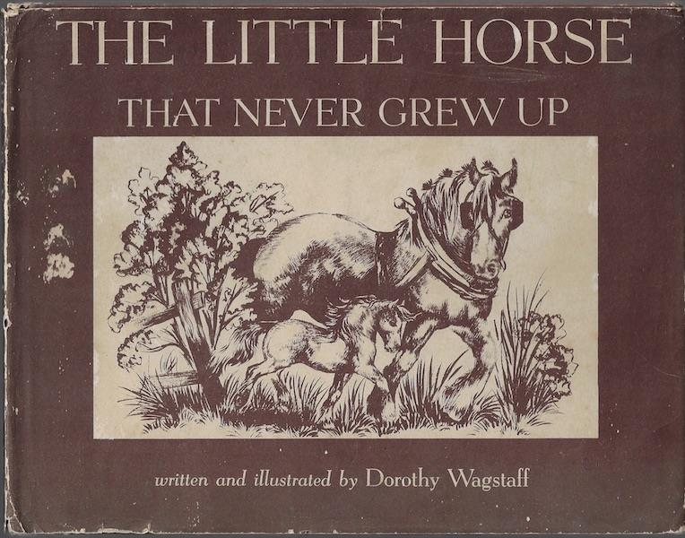 Image for The little horse that never grew up (Borzoi book)