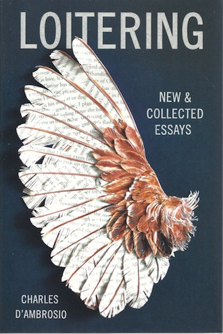 Image for Loitering: New and Collected Essays