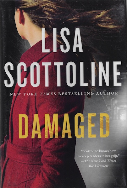 Image for Damaged: A Novel (A Rosato & DiNunzio Novel)