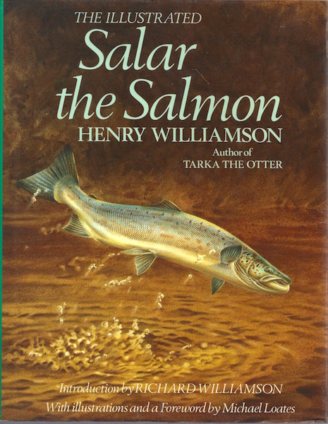 Image for Salar the Salmon