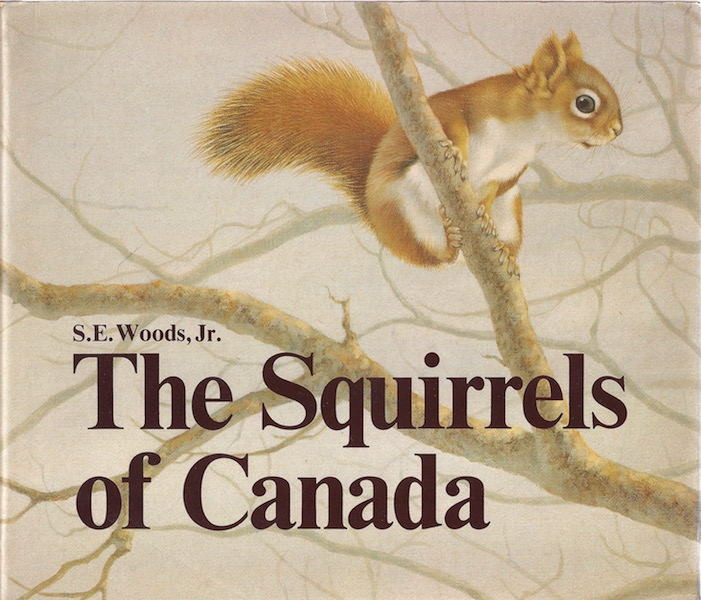 Image for The Squirrels of Canada