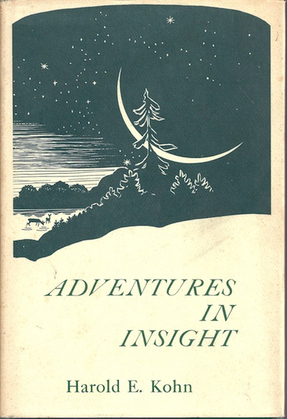 Image for Adventures in Insight