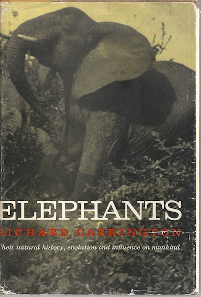 Image for Elephants: Their Natural History, Evolution and Influence on Mankind