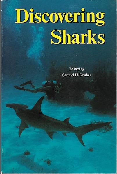 Image for Discovering Sharks