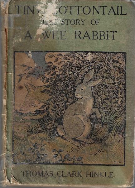 Image for Tiny Cottontail: The story of a wee rabbit and his friends
