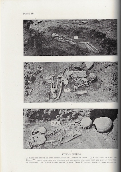 Image for The Indians of Pecos Pueblo, A Study of Their Skeletal Remains